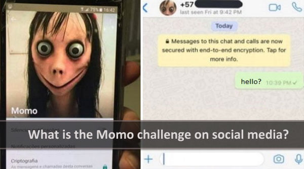 Beware from Momo challenge On Social Media?